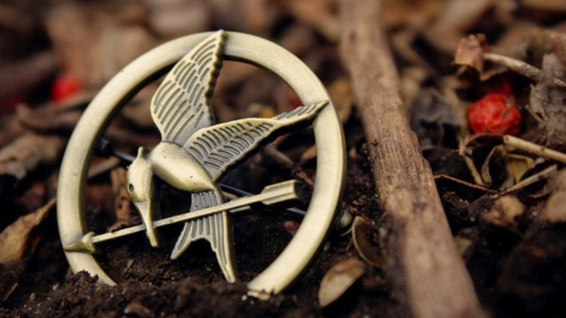 20-unique-the-hunger-games-items-on-etsy-121272a9ba